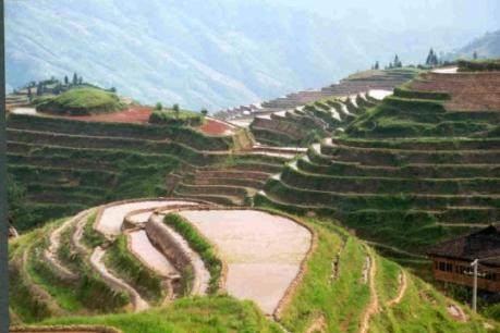 champ-sommet-montagne-chez-yongshen-17404.jpg