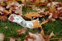 dollar-automne
